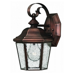 Outdoor Wall Light with Clear Glass in Antique Copper Finish