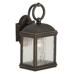 Outdoor Wall Light with Clear Glass in Obsidian Mist Finish