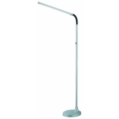 Lite Source Lighting Alteka Silver Floor Lamp with Coolie Shade