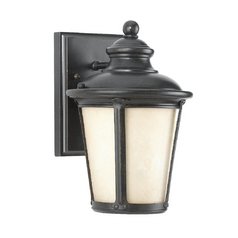 Outdoor Wall Light with Amber Glass in Burled Iron Finish