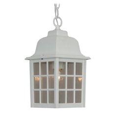 Seeded Glass Outdoor Hanging Light White Craftmade Lighting