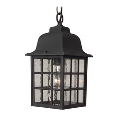 Seeded Glass Outdoor Hanging Light Black Craftmade Lighting