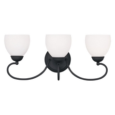 Livex Lighting Brookside Black Bathroom Light