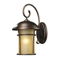 Outdoor Wall Light with Amber Glass in Regal Bronze Finish
