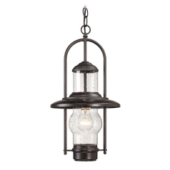 Outdoor Hanging Light with Clear Glass in Textured French Bronze Finish