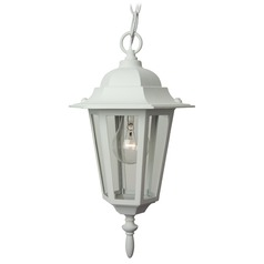 Craftmade Lighting Straight Glass Matte White Outdoor Hanging Light