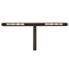 LED Path Light in Bronze Finish