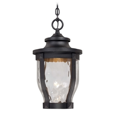 LED Outdoor Hanging Light with Clear Glass in Black Finish