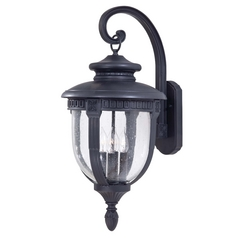 Minka Lighting Outdoor Wall Light with Clear Glass in Heritage Finish 8953-94