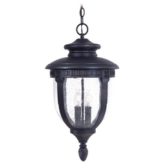 Minka Lighting Outdoor Hanging Light with Clear Glass in Heritage Finish 8954-94