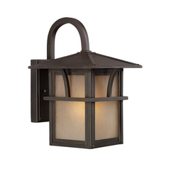 Outdoor Wall Light with Amber Glass in Statuary Bronze Finish