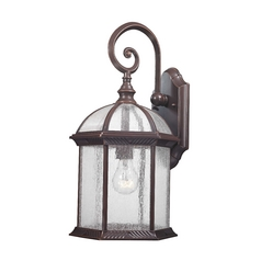 Bronze Outdoor Wall Light with Clear Seedy Glass - 18-3/4-Inches Tall
