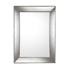 Capital Lighting Aged Silver with Antiqued Frame Rectangle Mirror 45.4x33.2