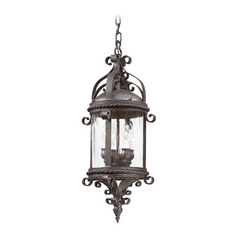 Outdoor Hanging Light with Clear Glass in Old Bronze Finish