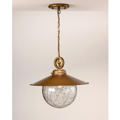 Pendant Light with Clear Glass in Earth Finish