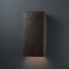 Outdoor Wall Light in Hammered Iron Finish