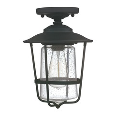 Capital Lighting Creekside Black Close To Ceiling Light