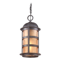 Outdoor Hanging Light with Amber Glass in Natural Bronze Finish