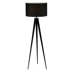Modern Floor Lamp with Black Shade in Black Finish