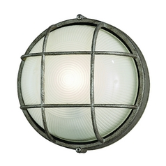 Outdoor Wall Light with White Glass in Silver Rust Finish