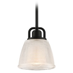 Quoizel Lighting Prismatic Glass Mystic Black Mini-Pendant Light