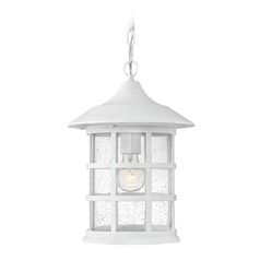 Seeded Glass Outdoor Hanging Light Classic White Hinkley Lighting