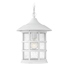 Seeded Glass LED Outdoor Hanging Light Classic White Hinkley Lighting