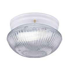 Flushmount Light with Clear Glass in White Finish