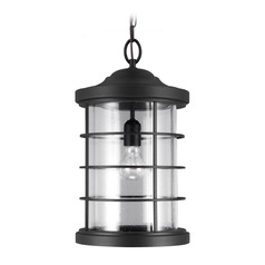 Sea Gull Lighting Sauganash Black Outdoor Hanging Light