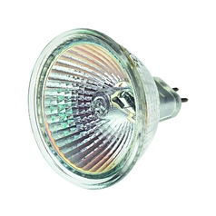 Hinkley Lighting 50-Watt MR16 Wide Flood Halogen Light Bulb