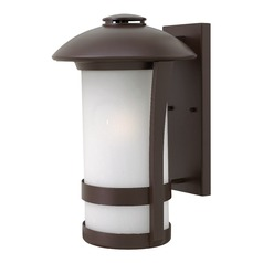 Etched Seeded Glass Outdoor Wall Light Bronze Hinkley Lighting