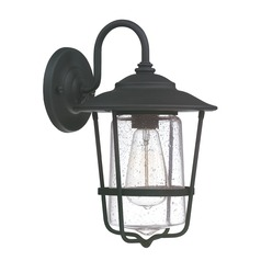 Capital Lighting Creekside Black Outdoor Wall Light