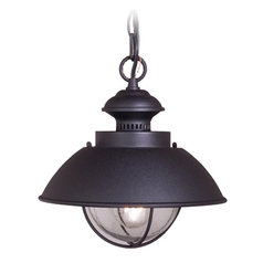 Outdoor Hanging Light with Seeded in Textured Black Finish