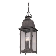 Troy Lighting Outdoor Hanging Light with Clear Glass in Aged Pewter Finish F3217