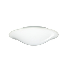 Flushmount Light with White Glass