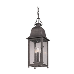 Troy Lighting Outdoor Hanging Light with Clear Glass in Aged Pewter Finish FF3217