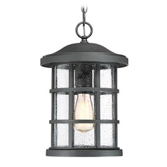 Quoizel Lighting Crusade Earth Black Outdoor Hanging Light