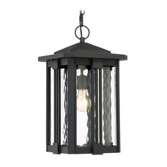 Quoizel Lighting Everglade Earth Black Outdoor Hanging Light