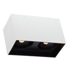 White / Black LED Flushmount Ceiling Light by Tech Lighting