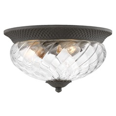 Hinkley Lighting Black Close To Ceiling Tropical Light