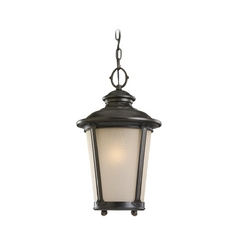 Outdoor Hanging Light with Amber Glass in Burled Iron Finish