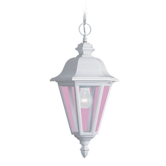 Outdoor Hanging Light with Clear Glass in White Finish