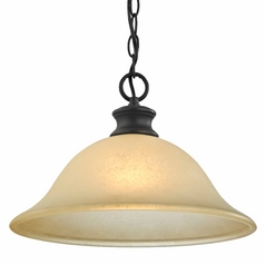 Swag Pendant Light in Bronze Finish