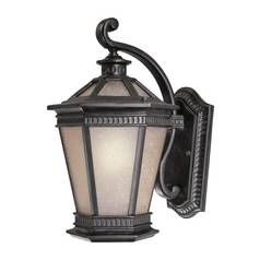 Dolan Designs 17-1/4-Inch Outdoor Wall Light 9795-68
