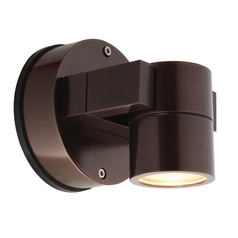 Outdoor Wall Light with Clear Glass in Bronze Finish