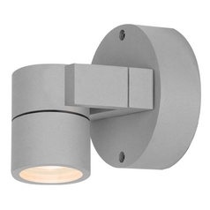 Outdoor Wall Light with Clear Glass in Satin Nickel Finish