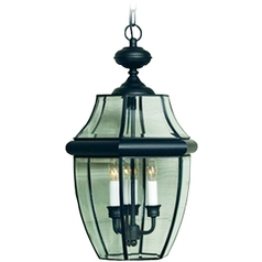 2-Lt Outdoor Hanging Light with Clear Glass - Black Finish
