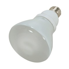 Satco Lighting 15-Watt R30 Reflector Compact Fluorescent Light Bulb S7249