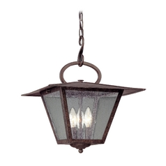 Outdoor Hanging Light with Clear Glass in Fired Iron Finish