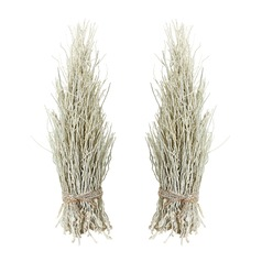 White Washed Coco Twig Sheaf - Set Of 2